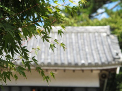 G11で撮影(松江城にて)